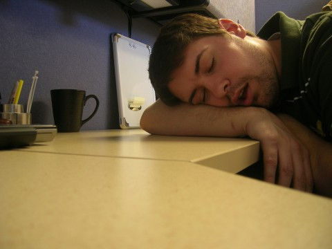 73/365 Desk Nap