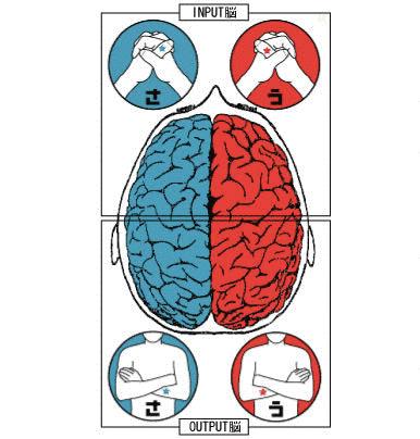 「利き脳」の画像検索結果