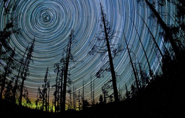 space211-star-trails-trees_58745_big_jpg__462×308_